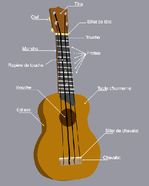 ukulele_anatomie